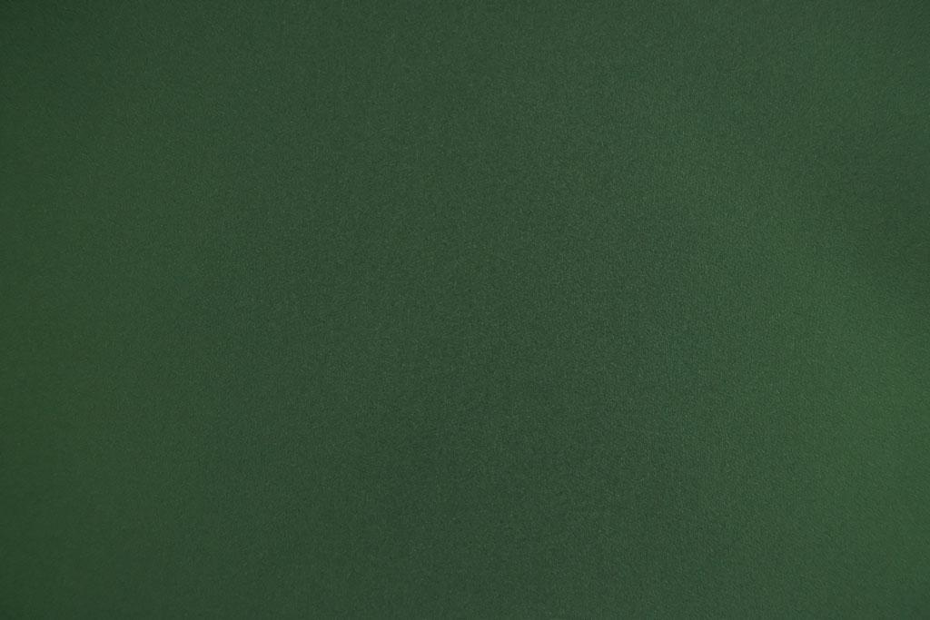 Toile pour Mur ou Plafond du Type R20-Algue