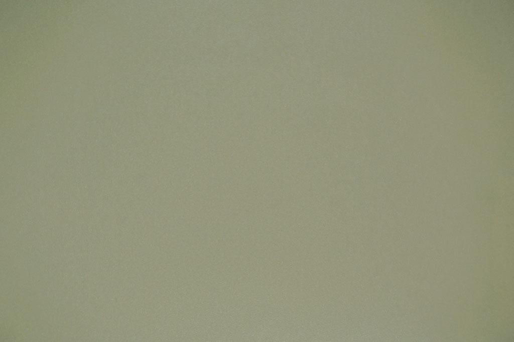 Toile pour Mur ou Plafond du Type R22-Champagne