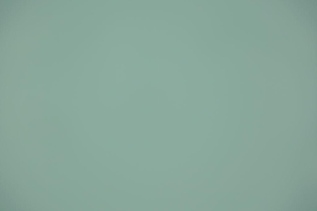 Toile pour Mur ou Plafond du Type S604-AMANDINE